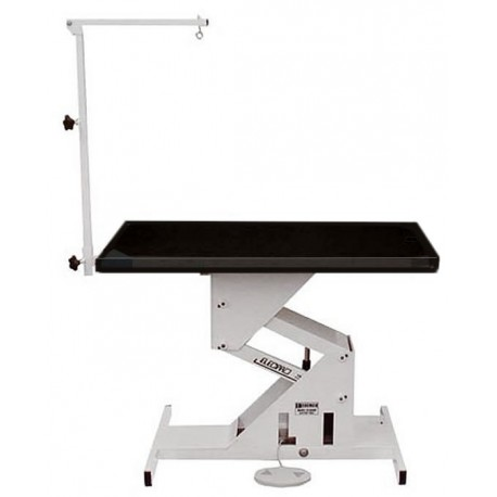 Edemco 42 Inch F976000 ElecPro Electric Table w/Swing Arm