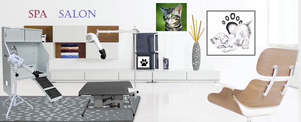 Pet Salon Spa Equipment